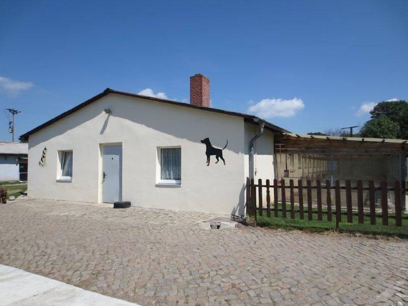 hundehaus_tierheimderenburg2