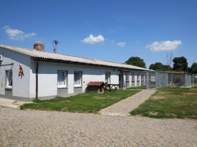 katzenhaus tierheimderenburg1